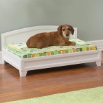 The Savannah Dog Bed is quaint and traditional
